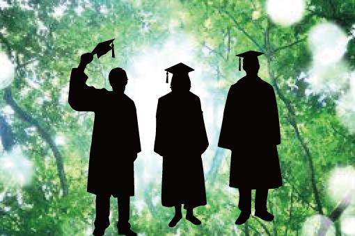 image for Postdoctoral recruitment (Ishikawa laboratory)