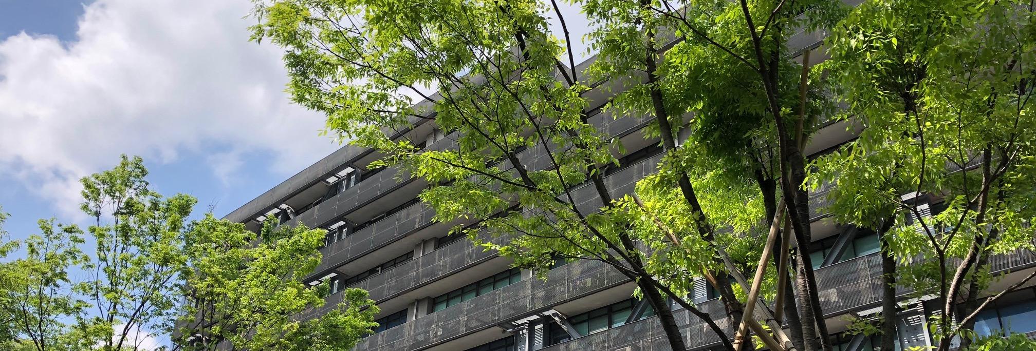 東京大学大学院工学系研究科 石川研究室の募集・採用の画像